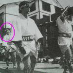 五郎丸さん新人の頃お祭り姿写真