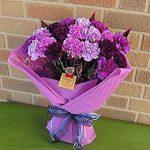 女性へプレゼント。母の日間に合うか?珍しい花 青いカーネーション「ムーン ダスト」